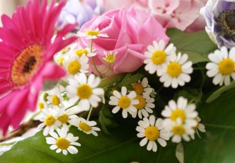 Warum nicht die Tischdeko der Babyparty mit Blumen aus dem Garten auffrischen