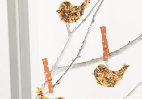 Mit einem Keksausstecher lassen sich schnell und einfach Vogelmotive aus den Müsliriegeln ausstanzen!
