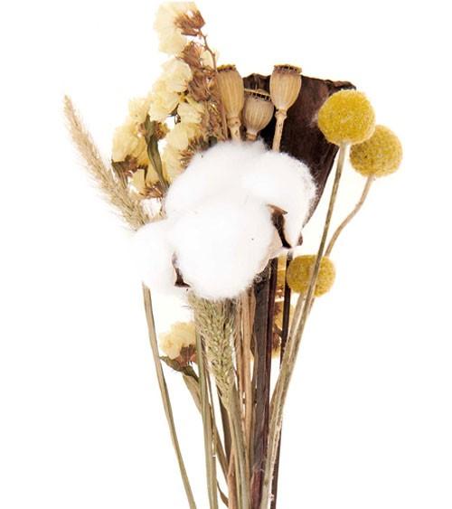 Trockenblumen-Set - natur gelb - ca. 30 cm