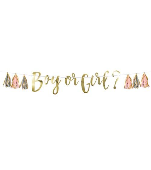 """""""Boy or Girl?""""-Girlande mit Tasseln - rosa, hellblau & gold - 1,5 m"""