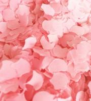Papierkonfetti - 100 g - rosa