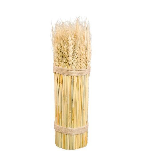 Getrocknetes Weizenähre-Bündel - 8 x 26 cm